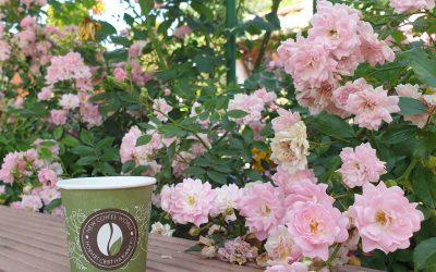Опознай България с New Coffee World: Аромат на рози и кафе